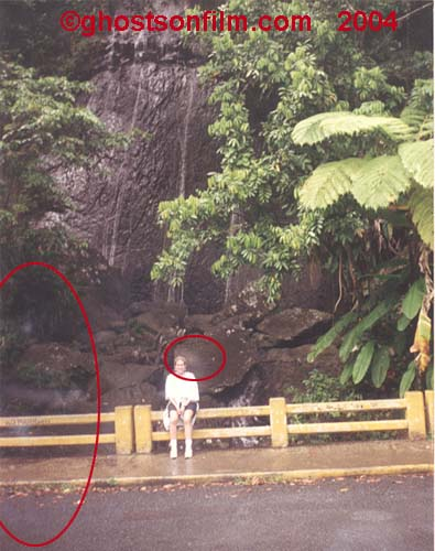 """Mists"" at the entrance to El Yunque rainforest, Puerto Rico."